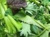 Salad Mix/Braising Mix