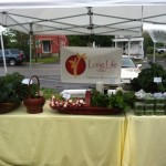 Hopkinton Farmers Market is working on a revitalization plan, come join the volunteer team!